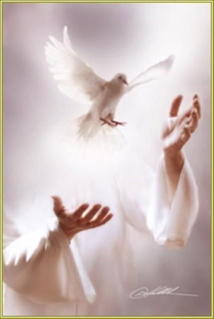 Eccezionale Lo Spirito Santo, come si riceve?   CRISTIANI EVANGELICI WL35