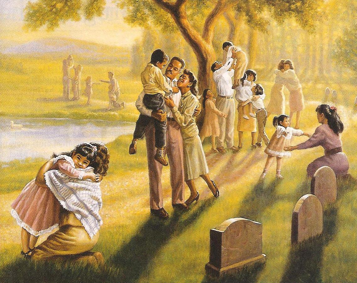 Testimoni di geova separati dalle famiglie cristiani